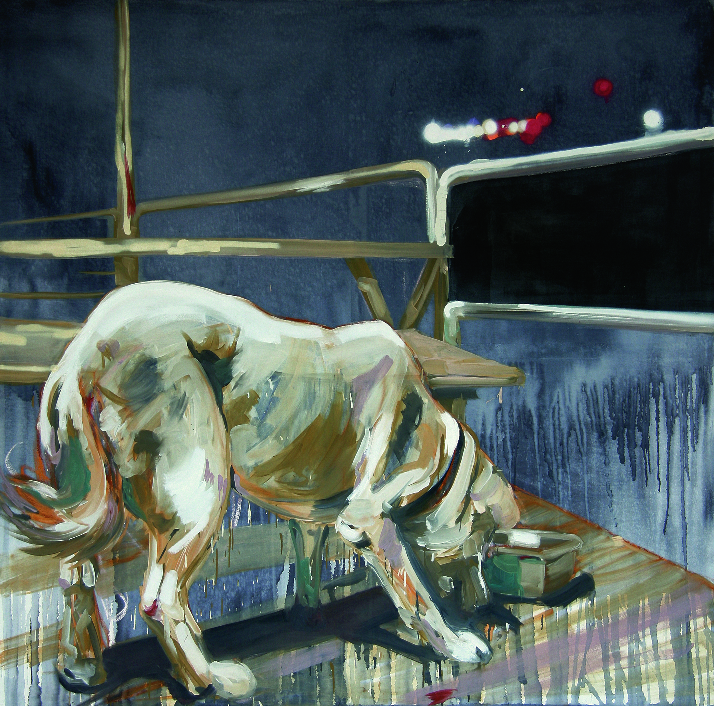 Bennis Dog