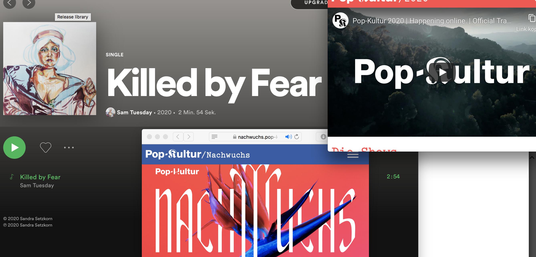 Popkultur Nachwuchs – Song Release und Popkultur Playlist